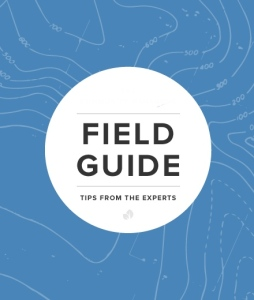 cm-field-guide-insights-cover
